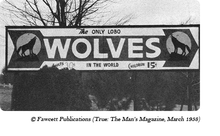 Sign for The Only Lobo Wolves in the World near Kane, PA along Route 6