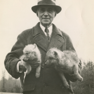 Dr. McCleery Holding Two Wolf Pups at the Lobo Wolf Park near Kane [Photograph]