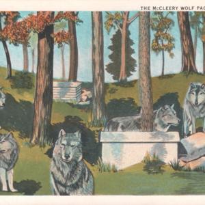 kec2013-mccleerywolfpack-postcard-retouched.jpg