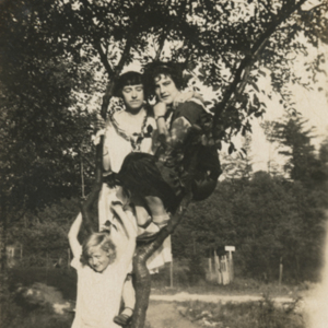 Three Girls in a Tree in Front of the Wolf Pens [Photograph]