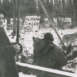 Marjorie and Jack Lynch Outside the Alaskan Timber Wolf Pen at the Lobo Wolf Park near Kane [Photograph]