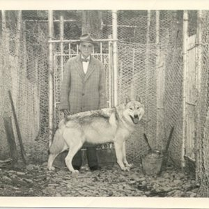 wolves32 - older McCleery with wolf.jpg