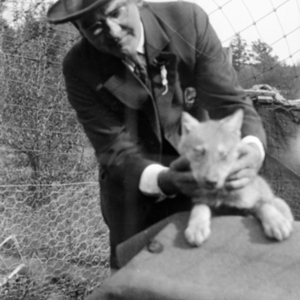 Robert B. Jones with a Wolf Pup at the Lobo Wolf Park in Kane [Photograph]